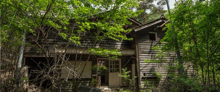 森の中の廃墟