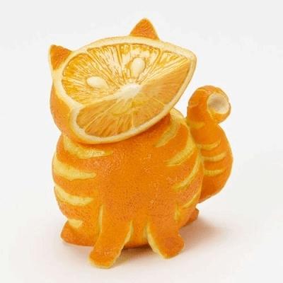 みかんで猫