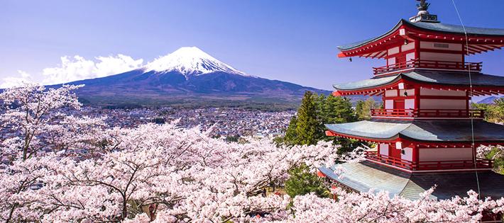 難しい言語ランキング7位日本語